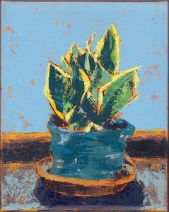 Sansevieria, Acrylic on canvas, 8x10in., June 2015 (Small Works Project donation)